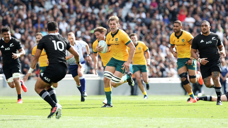 Wallabies, Pumas play out 15-all draw in Tri Nations